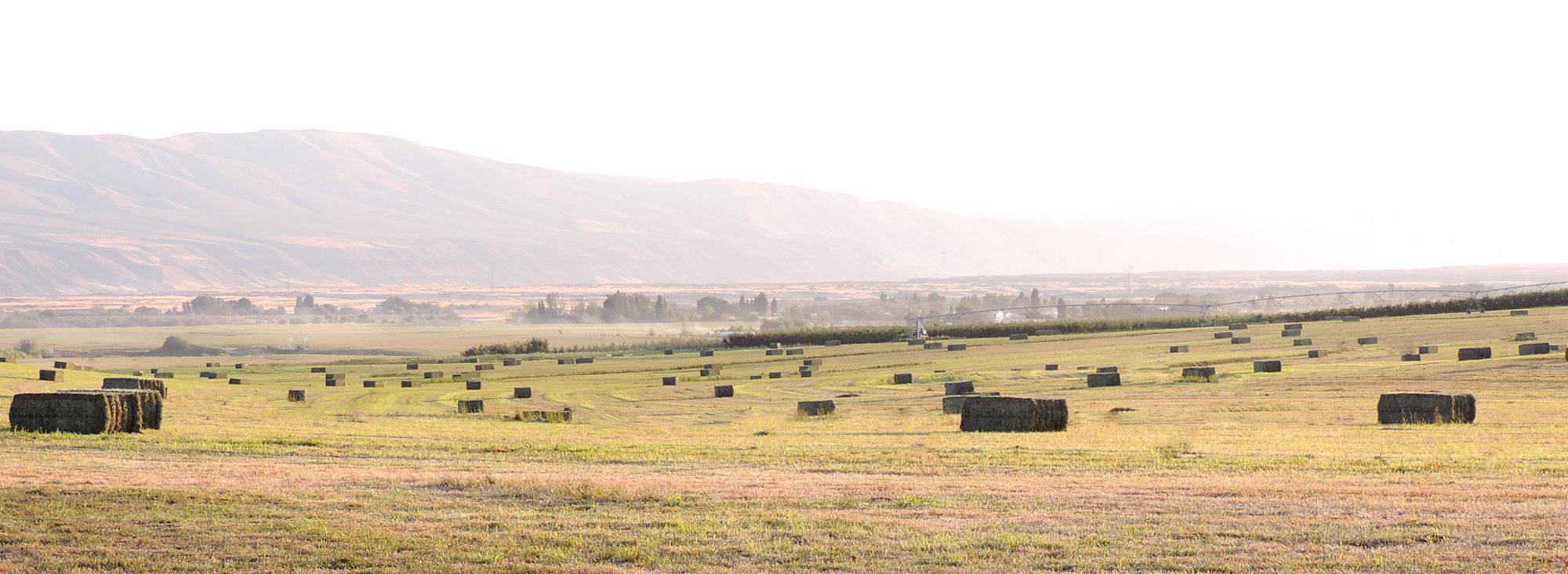 Huntzinger Farms